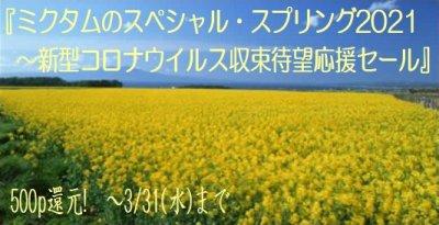 shop202102_2.jpg
